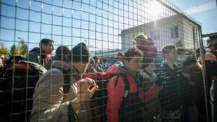 Des migrants bloqués à la frontière entre la Slovénie et l'Autriche, le 3 novembre 2015.