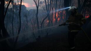 Un bombero del Servicio contra Incendios Rural de Nueva Gales del Sur protege un área ante el avance de las llamas en Woodford, Australia, el 8 de noviembre de 2019.