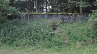 L'ancien bunker soviétique dans lequel a été retrouvée l'étrange colonie de fourmis.