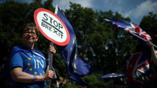 Manifestantes en contra del Brexit protestan fuera del Parlamento en Londres, Reino Unido, el 26 de junio de 2019.