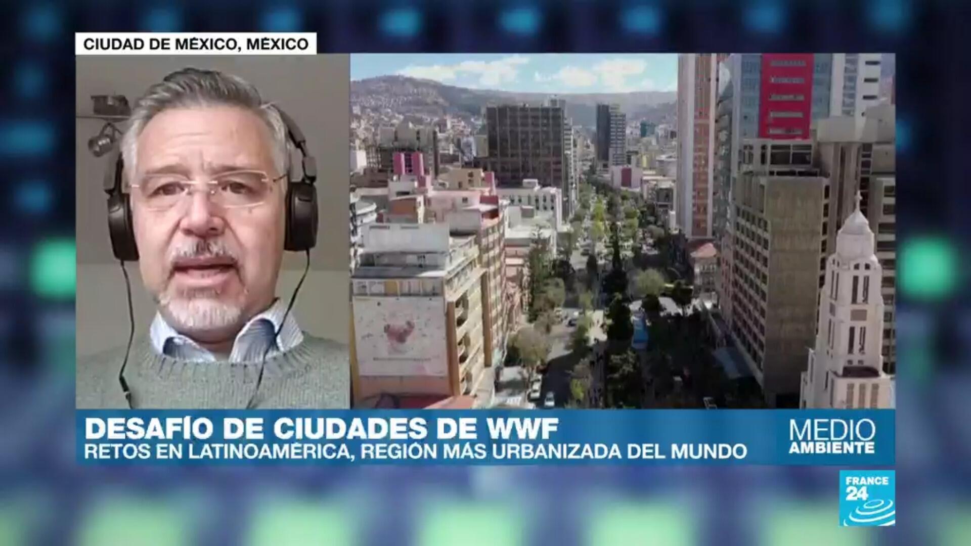 WWF Desafio de ciudades 2020