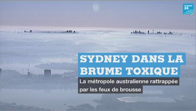 Une brume alimentée par les feux de brousse ont enveloppé Sydney, mardi.