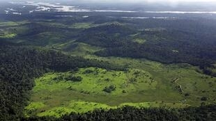Overview of a deforested area in the border of Xingu river in northern Brazil