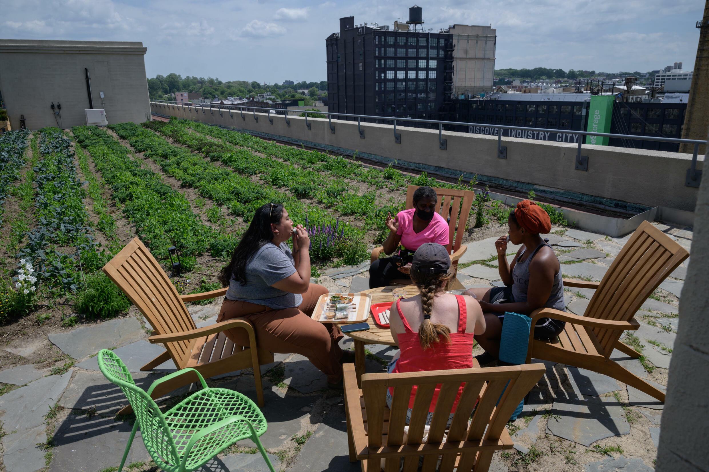 Des visiteurs sur le toit végétalisé de l'immeuble Brooklyn Grange, à New York, le 23 mai 2021.