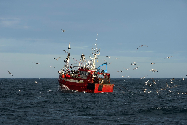 Brexit UE pêche