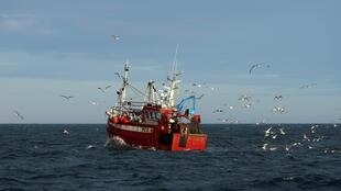 Gulls surround a fishing trawler as it works in the North Sea, off the coast of northeast England on January 21, 2020.