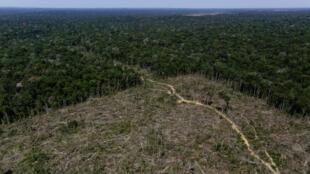 """Una vista aérea muestra la tierra deforestada durante la """"Operación Ola Verde"""" realizada por agentes del Instituto Brasileño de Medio Ambiente y Recursos Naturales Renovables, o Ibama, para combatir la tala ilegal en Apui, en la región sur del estado de Amazonas."""