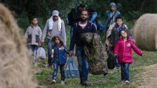 Un groupe de migrants en Serbie longent la frontière hongroise, le 23 juin 2015.