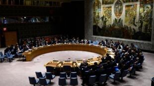 مجلس الأمن التابع لمنظمة الأمم المتحدة.