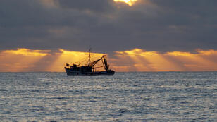 Un bateau de pêche au large de l'Equateur (photo d'illustration).