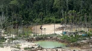 View of the deforested area around a now-dismantled illegal mining camp in the Peruvian Amazon