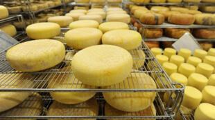 Variété de fromages des Pyrénées