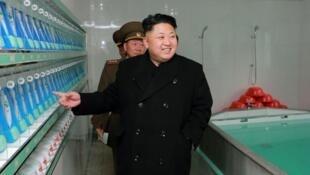 Le leader nord-coréen Kim Jong-un, le 1er décembre 2014.