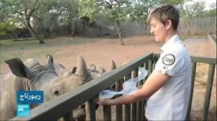 2020-02-18 02:23 في عمق الحدث المغاربي / ملجأ لمنع انقراض وحيد القرن