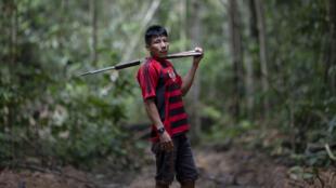 Le chef Tatji Arara, 41ans, patrouille avec un fusil sur les terres indigènes, le 13mars2019 en Amazonie brésilienne.