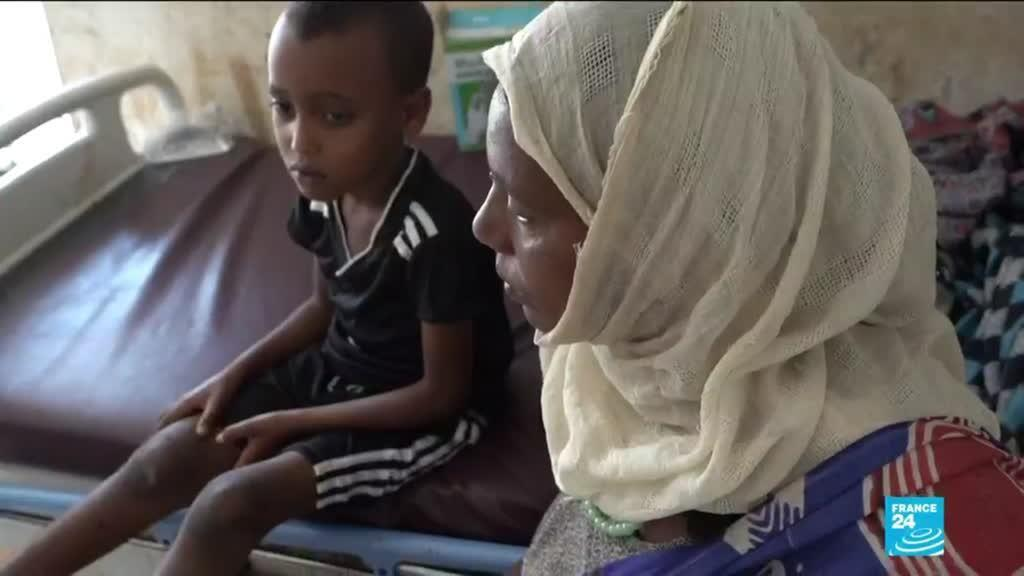 2021-02-05 13:14 Ethnically-driven attacks in Ethiopia grow as survivors describe pain in F24 exclusive report