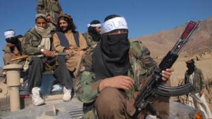 مسلحون تابعون لحركة طالبان باكستان
