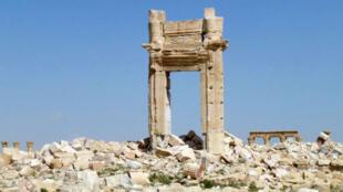 L'armée syrienne a repris la ville de Palmyre à l'EI dimanche 27 mars 2016.