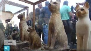 """مصر: اكتشافات أثرية جديدة في الجيزة والسلطات تصفها """"بالمتحف""""."""