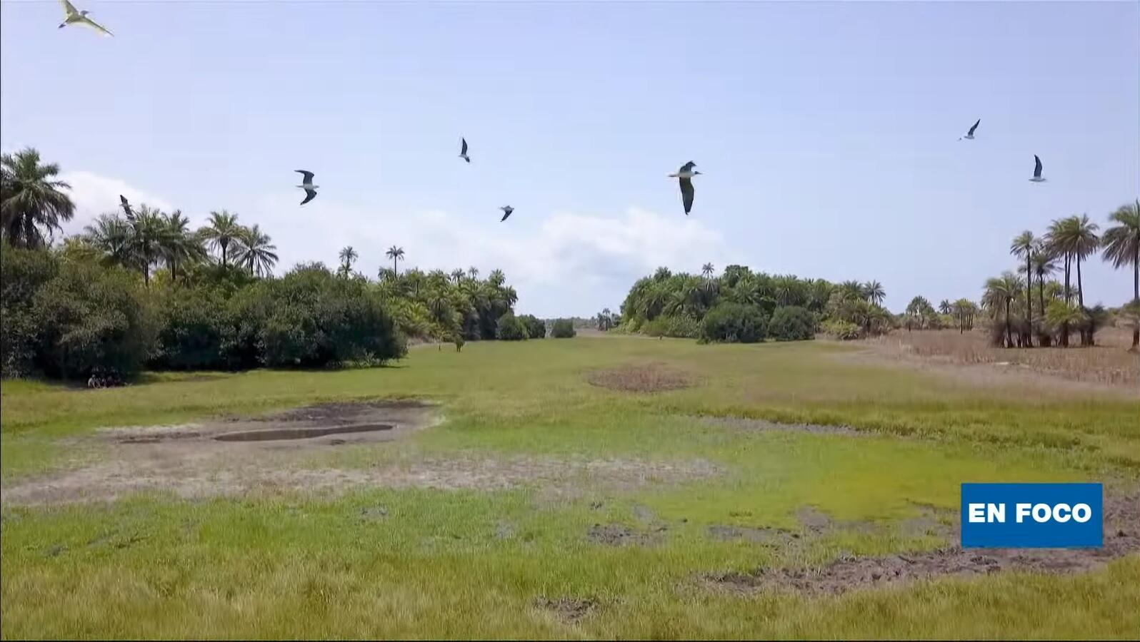 En Foco - Bijagós Guinea Bissau