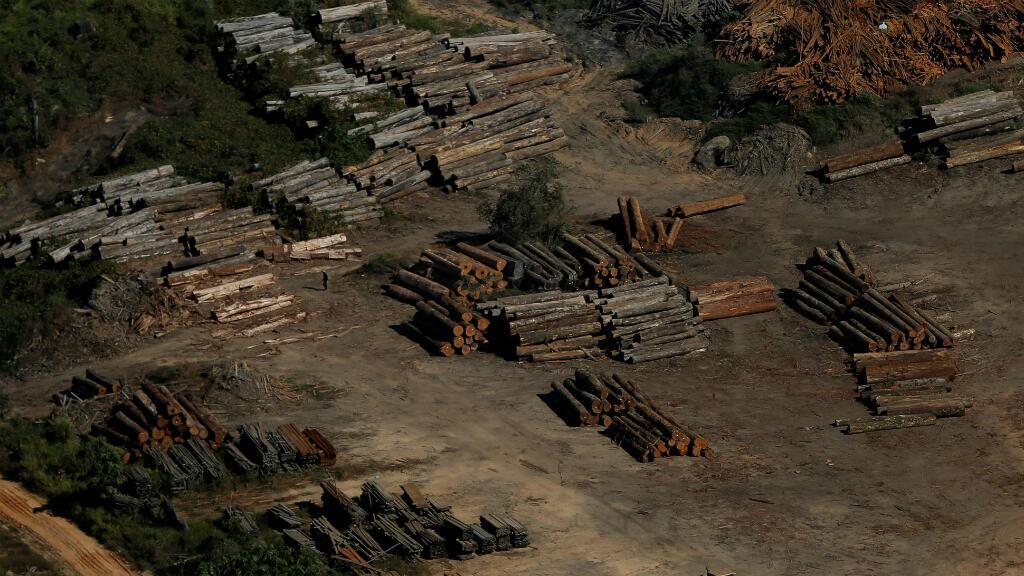 """Foto de archivo durante la """"Operación Ola Verde"""" llevada a cabo por agentes del Instituto Brasileño para el Medio Ambiente y los Recursos Naturales Renovables, para combatir la tala ilegal en Apui, estado de Amazonas, en Brasil, el 27 de julio de 2017."""