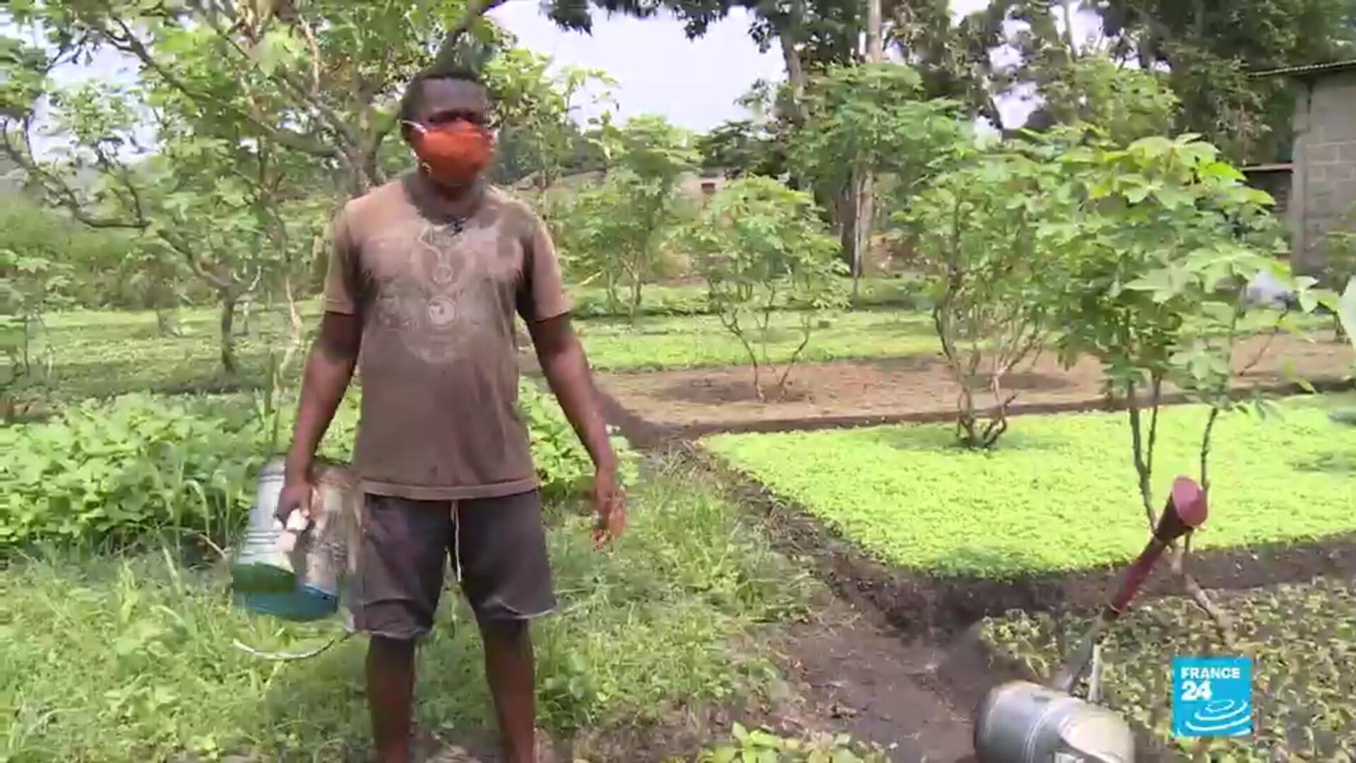Un maraîcher, près de Kinshasa.