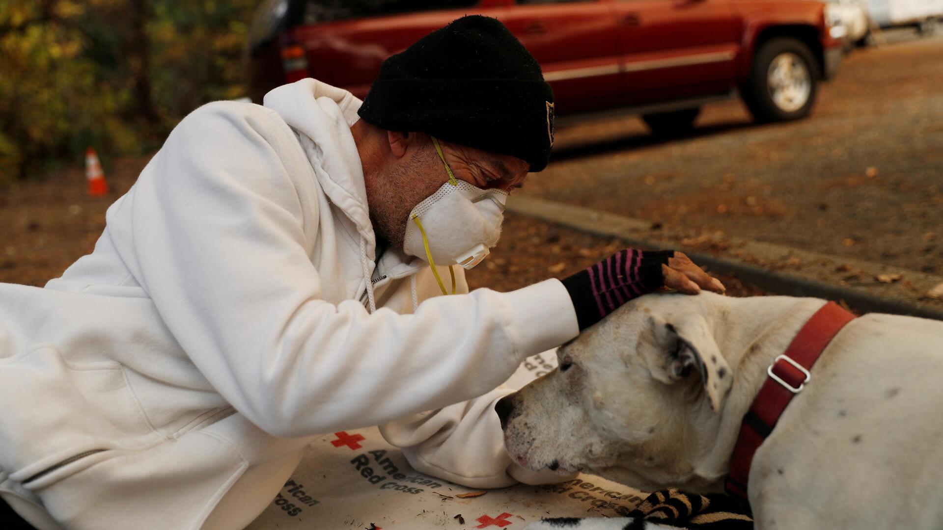 El evacuado Brian Etter y su perro Tone, que caminaron a pie para escapar del Camp Fire, descansan en el estacionamiento de Neighborhood Church of Chico, en Chico, California , EE. UU., 11 de noviembre de 2018.