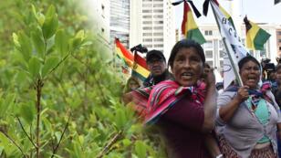 Miles de cocaleros de la región de Yungas marcharon por las calles de La Paz protestando contra el Gobierno del presidente boliviano Evo Morales y exigiendo su renuncia, el 3 de septiembre de 2018.