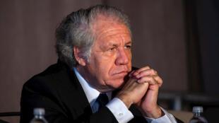 LuisAlmagro (1)
