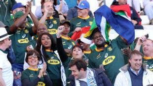 Des supporters sud-africains soutiennent les Springboks face à l'Argentine, le 25 août 2018 à Mendoza.