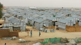 مخيم للنازحين في مايدوغوري بشمال نيجيريا في 26 مارس/آذار 2020