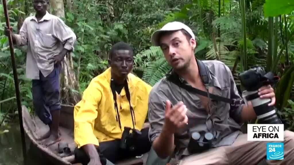 2021-08-31 22:55 Benin's rare swamp forest 'at risk of disappearing'