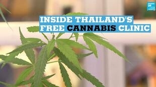 A new clinic in Thailand is offering patients free cannabis oil.