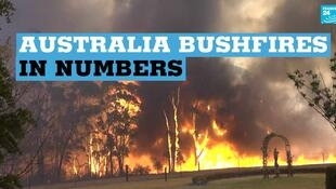 Fires in Australia have burned 10.3 million hectares of land destroyed around 2,000 homes.