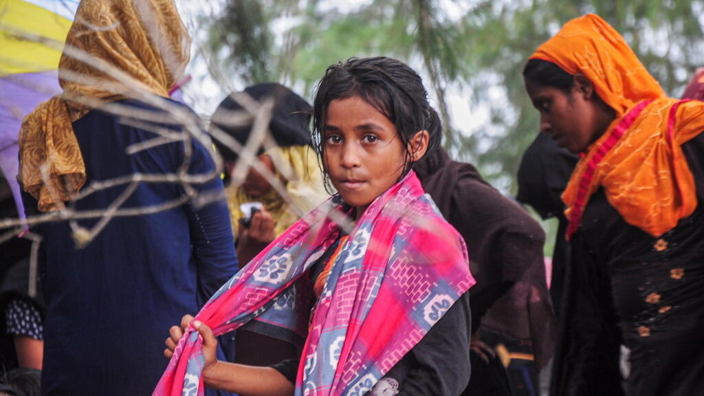 UN urged to investigate 'improper' sharing of Rohingya data with Myanmar