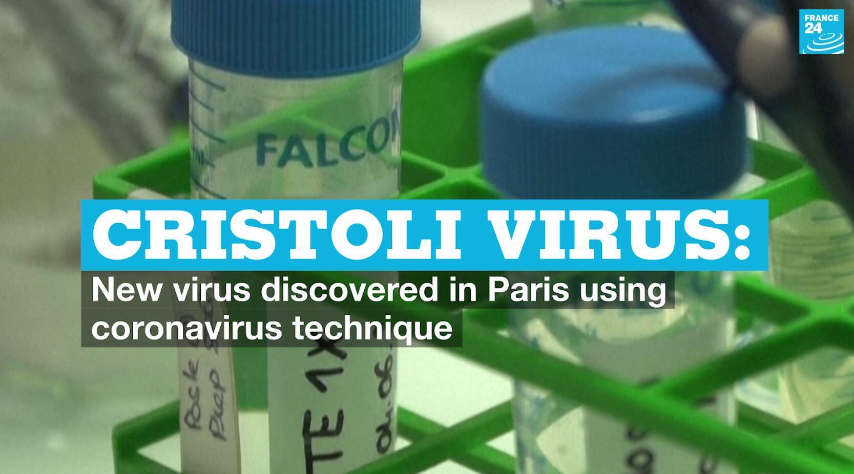 Researchers in France say they have discovered a new virus using the same method used to identify the coronavirus that caused the Covid-19 pandemic.