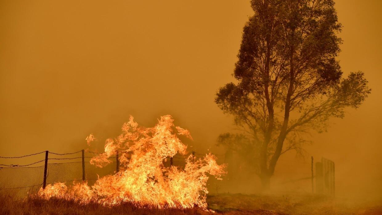 Image result for australia rain