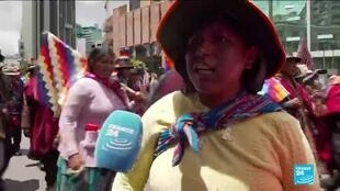 A supporter of Bolivia's Evo Morales in La Paz.