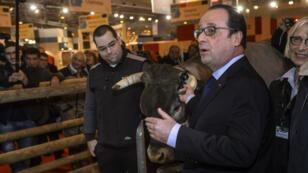 Hué et insulté samedi au Salon de l'agriculutre, François Hollande n'est pas le premier dirigeant à être chahuté par les éleveurs.