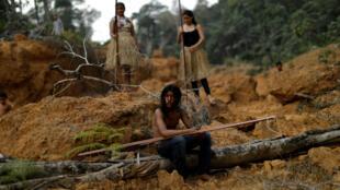 Brasil deforestacion