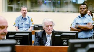 الزعيم السياسي السابق لصرب البوسنة رادوفان كرادجيتش في قاعة المحكمة في لاهاي.