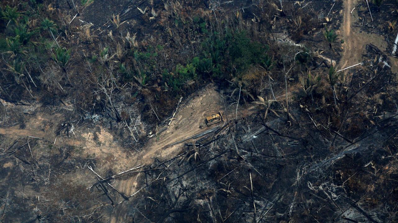 Una vista aérea de una parcela deforestada del Amazonas en Boca do Acre, estado de Amazonas , Brasil, 24 de agosto de 2019.