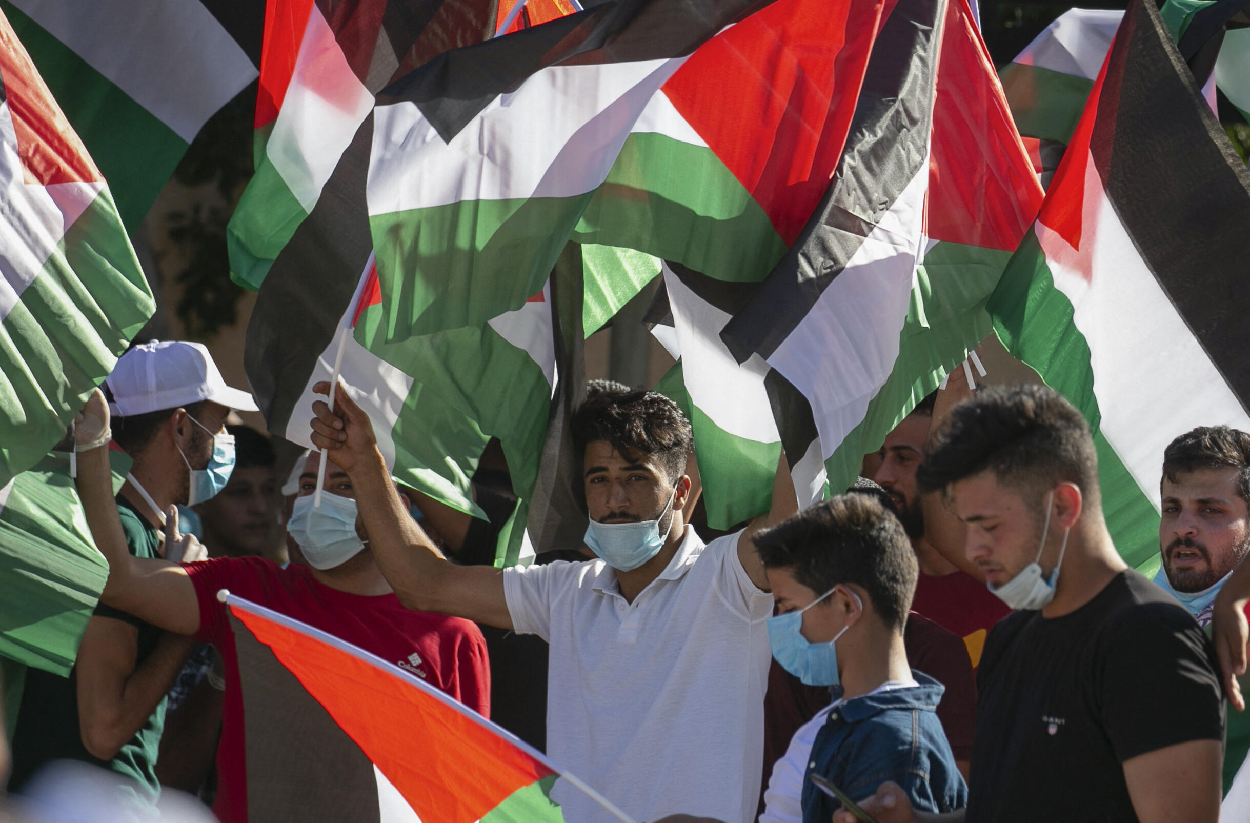palestinian-flags