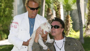 Roy Horn (R) poses with a white tiger cub and long-time collaborator Siegfried Fischbacher