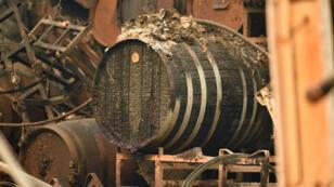 L'exploitation viticole de Paradise Ridge a été ravagée par les incendies californiens.