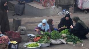 مصريات يبعن ويشترين خضروات في سوق شعبي بالجيزة، 2 أكتوبر/تشرين الأول 2019.