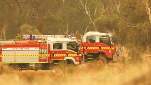 Camiones de bomberos esperan instrucciones durante un incendio forestal en Perth, Australia, el 2 de febrero de 2021
