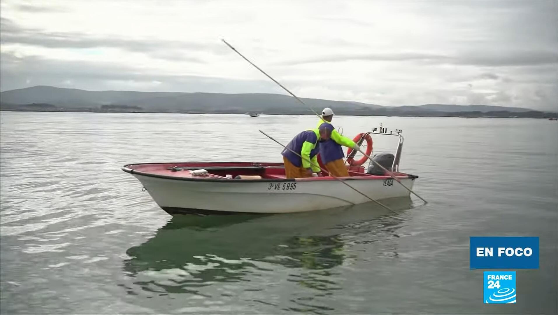 En Foco Pescadores Galicia