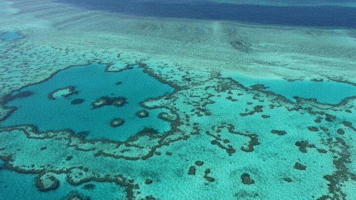La Gran Barrera de Coral brinda trabajo a unos 19.000 australianos.
