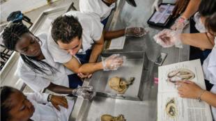 L'école de médecine cubaine ELAM, une des plus avancées au monde.